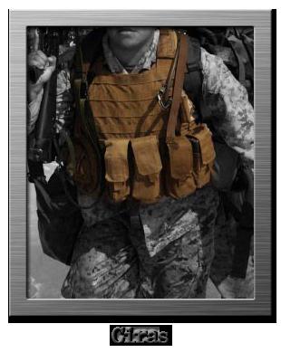 tattico body armor plate carrier ciras